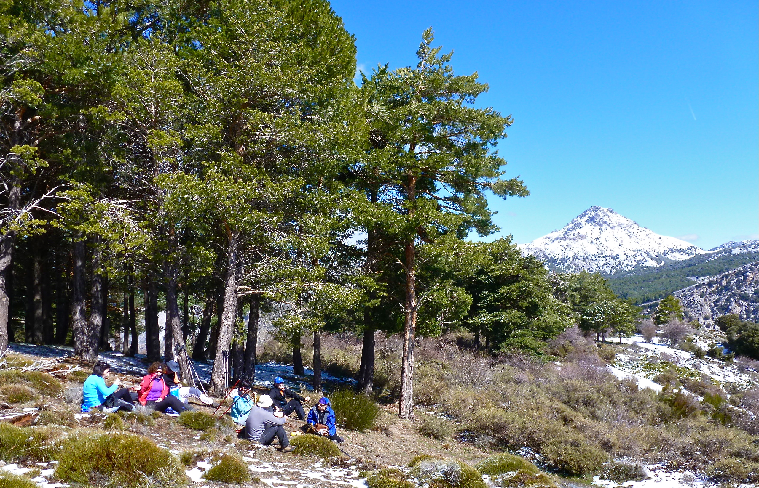Sierraysol Ecotourism In Andalusia Guided Hiking Tours