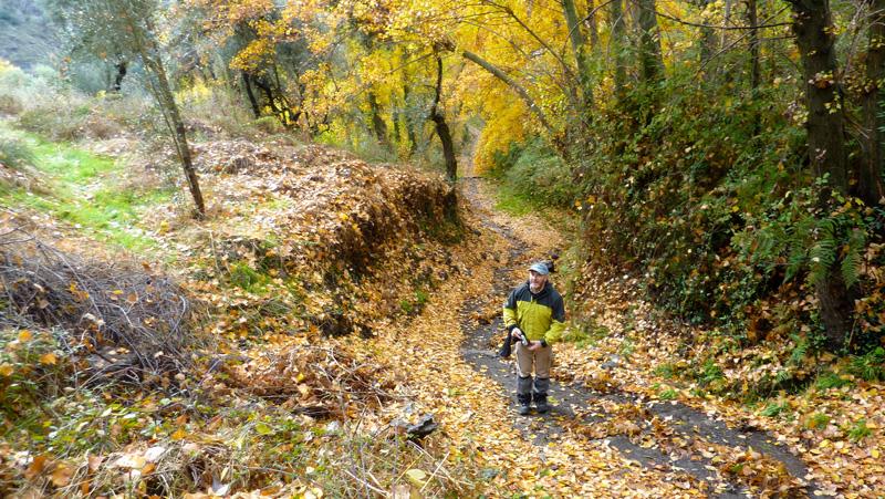 Excursión a la Alpujarra