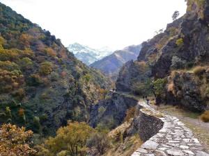 autumn-colours-hike-in-sierra-nevada-vereda-estrella