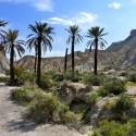 Hiking-in-Almeria-beach-andalusia-1