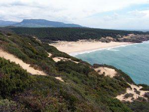 El Estrecho y los Alcornocales.P.N @ Severo Ochoa | Santillana del Mar | Cantabria | Spain
